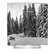 Winter Forest Journey Shower Curtain