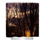 Winter Forest Sunrise Shower Curtain