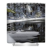 Winter Fresh Shower Curtain