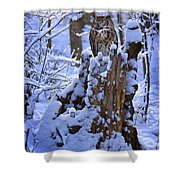 Winter Guest Shower Curtain