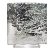 Winter Hare At The Fence Shower Curtain