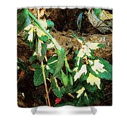 Winter Hideout Shower Curtain
