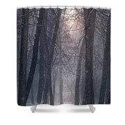 Winter Hush Shower Curtain