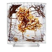 Winter Hydrangea Shower Curtain