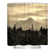 Winter In Black N White Shower Curtain