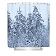 Winter In Maine 2017 Shower Curtain