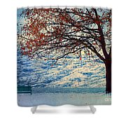Winter In Peachland Shower Curtain