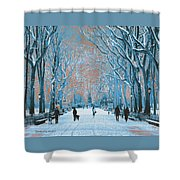 Winter In The City Park Shower Curtain