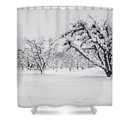 Winter In The Orchard Shower Curtain