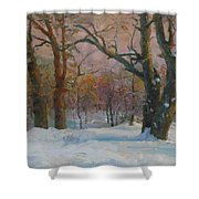 Winter In The Wood Shower Curtain