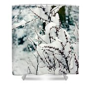 Winter Is Comming  Shower Curtain