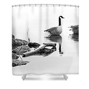 Winter Lake Residents Shower Curtain
