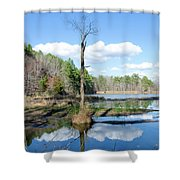 Winter Lake View Shower Curtain by George Randy Bass