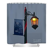 Winter Lamppost Shower Curtain