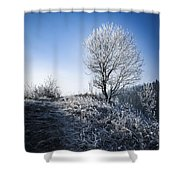 Winter Landscape Of Trees Covered With Frost Shower Curtain