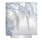 Winter Landscape With Snow-covered Trees Shower Curtain