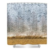 Winter Layers Shower Curtain