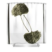 Winter Leaf Shower Curtain