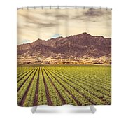 Winter Lettuce Shower Curtain