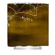Winter Lights Shower Curtain