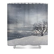 Winter Shower Curtain by Lourry Legarde