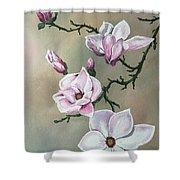 Winter Magnolia Blooms Shower Curtain
