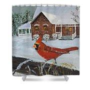Winter Male Cardinal Shower Curtain
