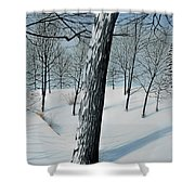 Winter Maple Shower Curtain