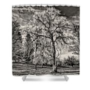Winter Marches On Polaroid Shower Curtain