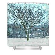 Winter Mimosa Painterly Shower Curtain