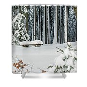 Winter Moments In Harz Mountains Shower Curtain
