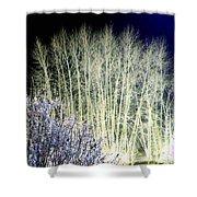 Winter Moonlight Shower Curtain