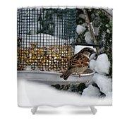 Winter Mornings Shower Curtain