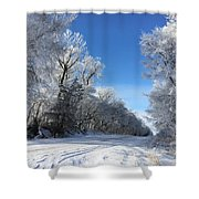 Winter On 210th St. Shower Curtain