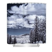 Winter On 89a Shower Curtain