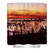 Winter On The Bay Shower Curtain