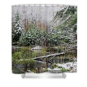 Winter On The Beaver Pond Shower Curtain