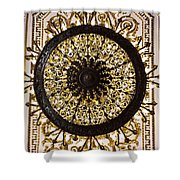 Winter Palace 1 Shower Curtain