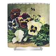 Winter Pansies Shower Curtain