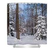 Winter Perfection Shower Curtain