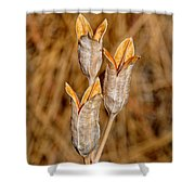 Winter Pods Shower Curtain