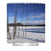 Winter Pond Shower Curtain