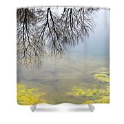 Winter Pond Reflections Shower Curtain