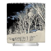 Winter Prelude  Shower Curtain
