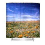 Winter Rainfall Shower Curtain