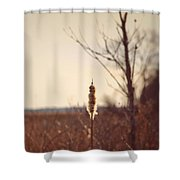 Winter Remnants Shower Curtain