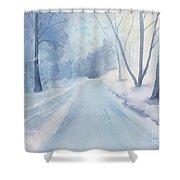 Winter Road Krkonose Mountains, From Photo By Milos Polacek Shower Curtain