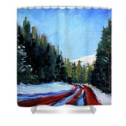Winter Road Trip Shower Curtain