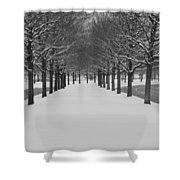 Winter Rows Shower Curtain