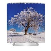 Winter Scene Genessee, Id Shower Curtain